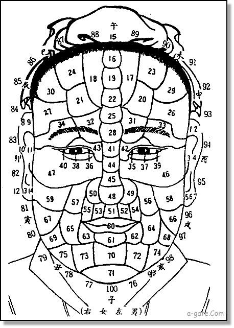 額頭中間有一塊突出來的骨叫什麼骨呢?
